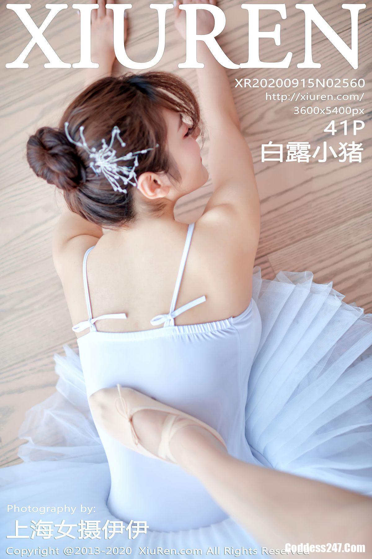 XiuRen秀人网 Vol.2560 白露小猪